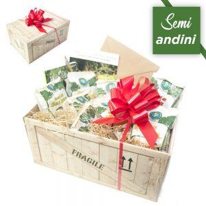 Box Semi Andini